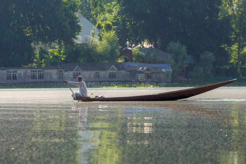 Personenvervoer een shikaraboot op het Dal meer in Srinagar, Kashmir, India stock afbeelding