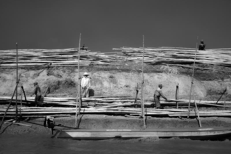 03 2015 personer på tonle underminerar sjön Kambodja arkivbild