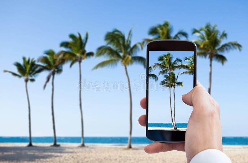Personhand som fotograferar med mobiltelefonen royaltyfria bilder
