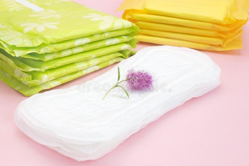 Personlig omsorg, foto för kvinnahygienbefruktning Kvinnliga hygienprodukter, rosa färger blommar på det menstruations- blocket M royaltyfria bilder