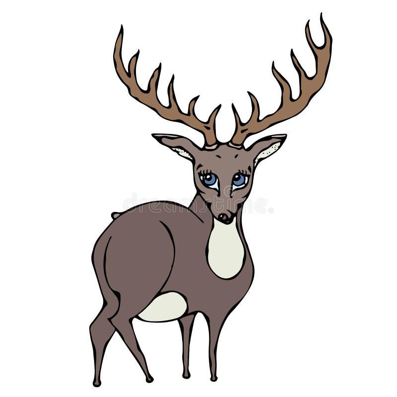 Personnage de dessin animé mignon de caribou de renne de cerfs communs D'isolement sur un vecteur tiré par la main de croquis de  illustration libre de droits