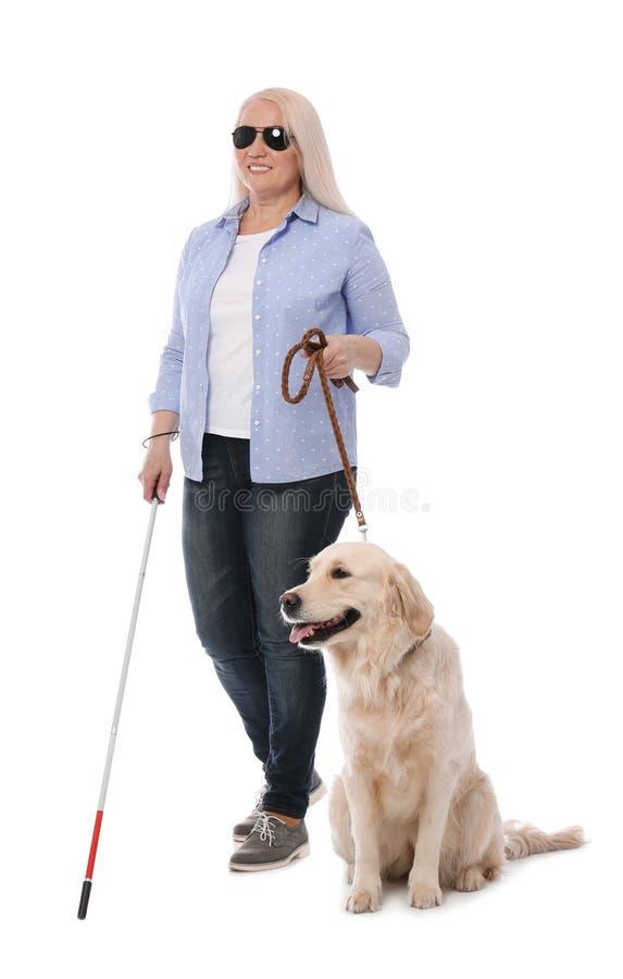 Personne aveugle avec le long chien de canne et de guide sur le blanc images libres de droits