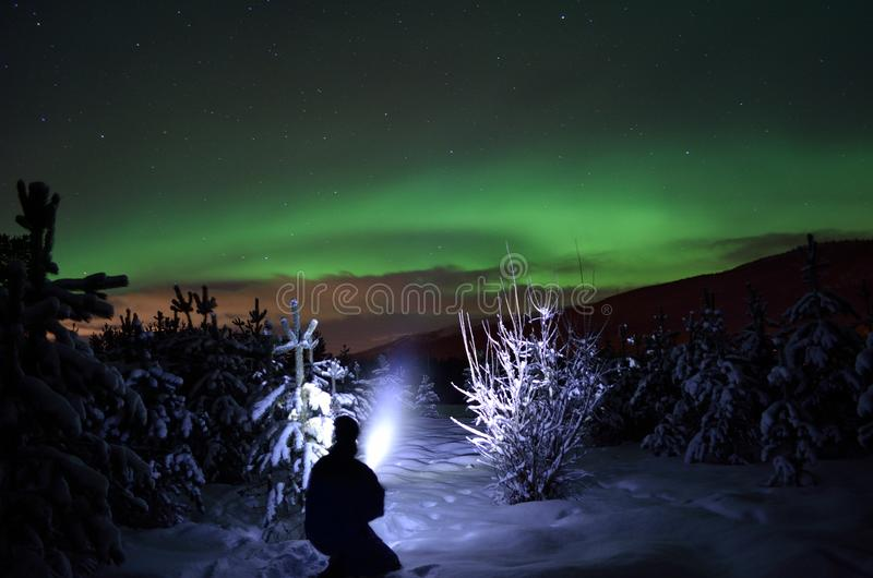 Personne dirigeant le faisceau de lampe-torche vers l'aurora borealis sur le ciel nocturne d'hiver dans le domaine impeccable d'a photo stock