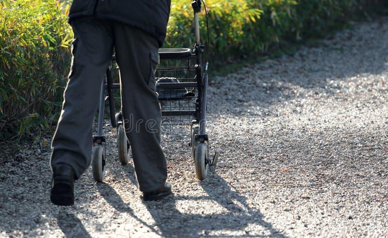 Personnes âgées avec un marcheur pendant la promenade en parc photo libre de droits