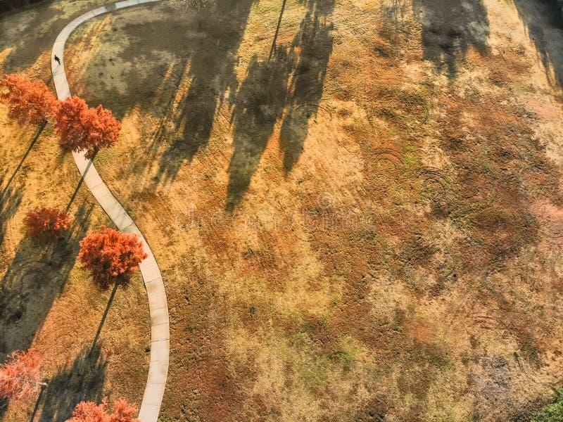 Personnes de vue aérienne marchant le long de la voie incurvée avec les feuilles d'automne colorées près de Dallas images stock