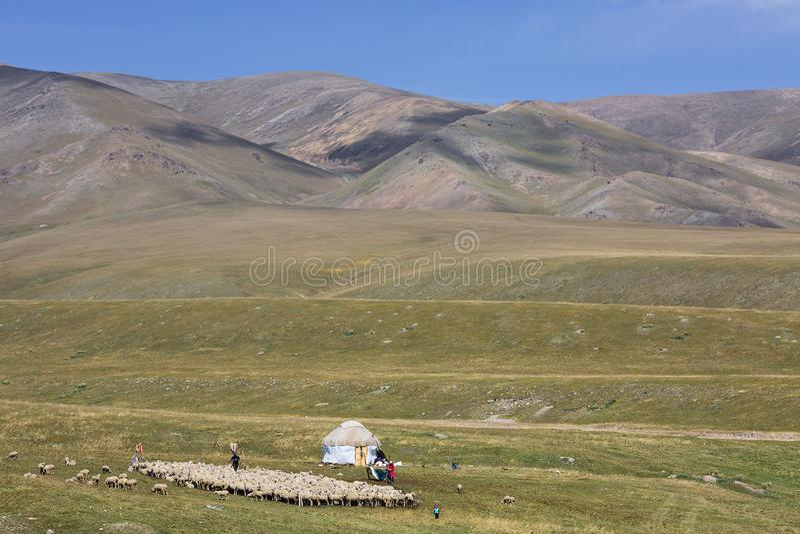 Personnes nomades kazakhs avec leur yurt et troupeau de moutons, en Assy Plateau, Kazakhstan photo libre de droits