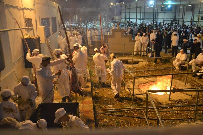 Personnes samaritaines au sacrifice traditionnel de pâque dans le bâti Gerizim près de la ville de banque occidentale de l'agneau image libre de droits