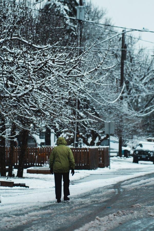 Persoon die in Groen Jasje onderaan Sneeuw Landelijke Buurtstraat lopen in Philomath Oregon royalty-vrije stock afbeeldingen