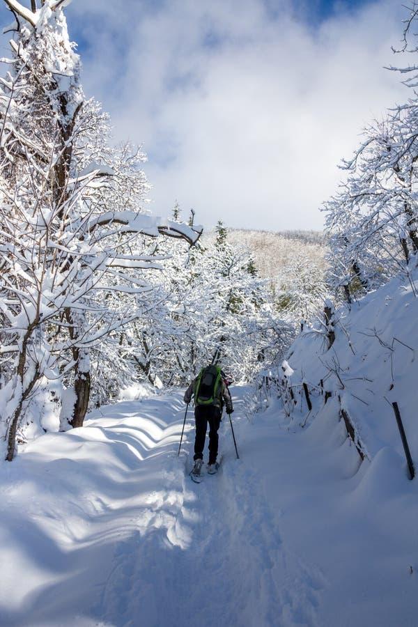 Persoon die op sneeuw op zeer koud landschap lopen royalty-vrije stock afbeelding