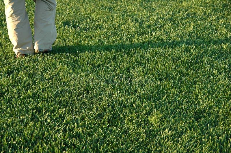Persoon op gras stock foto's