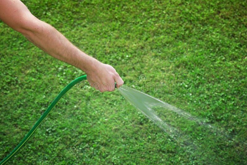 Persoonshand het water geven gras stock foto