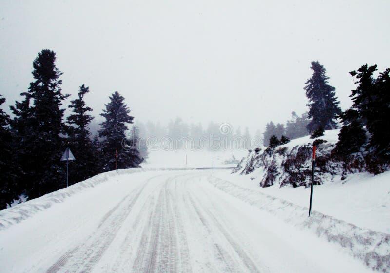 Perspectief van de sneeuw het witte weg stock fotografie