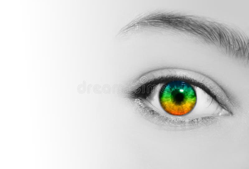 Perspectiva da visão do olho do arco-íris imagens de stock royalty free