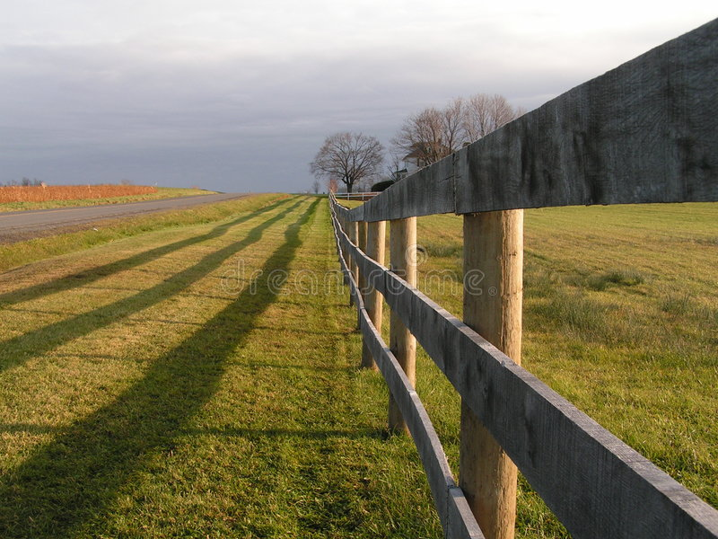 Download Perspective stock photo. Image of board, grow, pasture - 100468