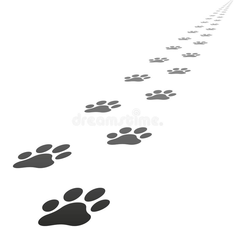 Vector dog paw prints vector illustration