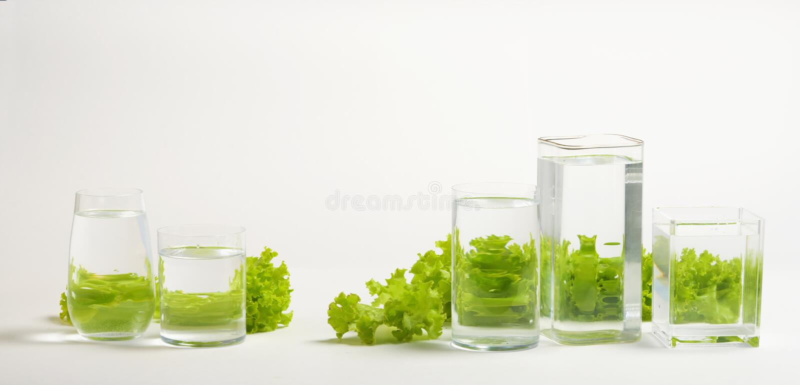 Foods distorted through liquid and glass on white background. Perspective, fractured and skewed images of common foods as seen through vessels filled with water royalty free stock photo