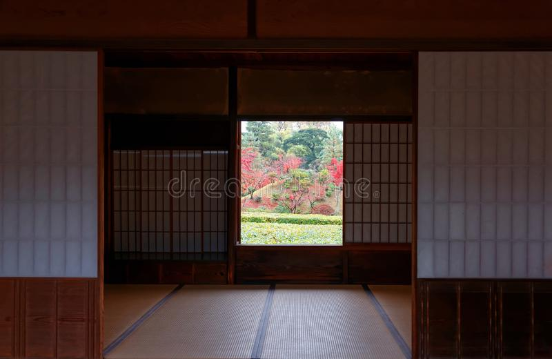 A perspective from inside a traditional Japanese tatami room with view of fiery maple trees in a Japanese garden royalty free stock image