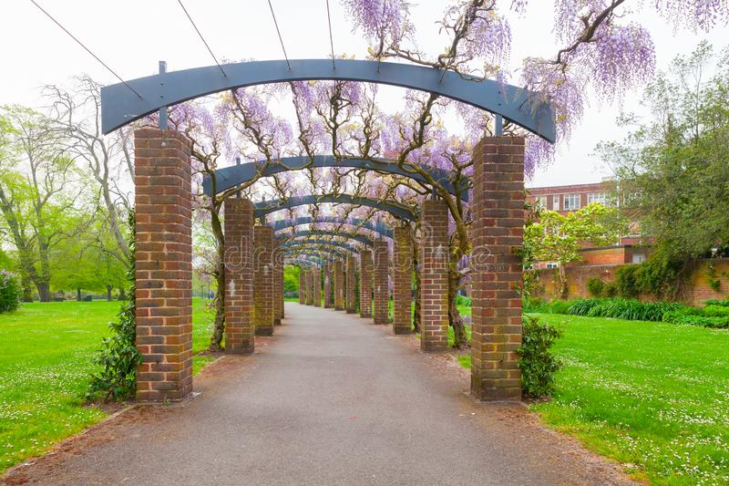 Perspective view of an arcade in park. Perspective view of an outdoor arcade with flowers. East Park of Southampton, United Kingdom royalty free stock image