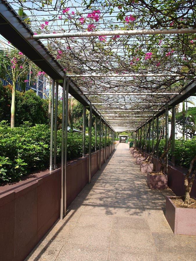 Perspective Walkway stock photos