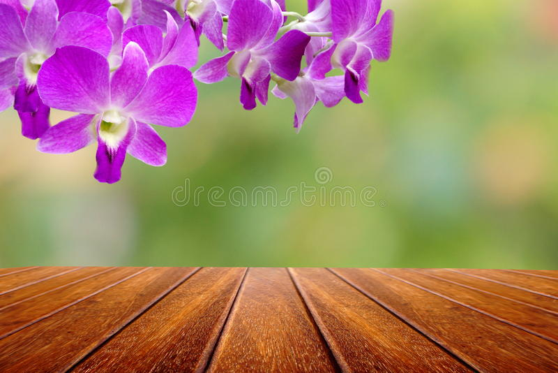 Perspective wood table and thai orchid flower over nature abstract background. stock photography