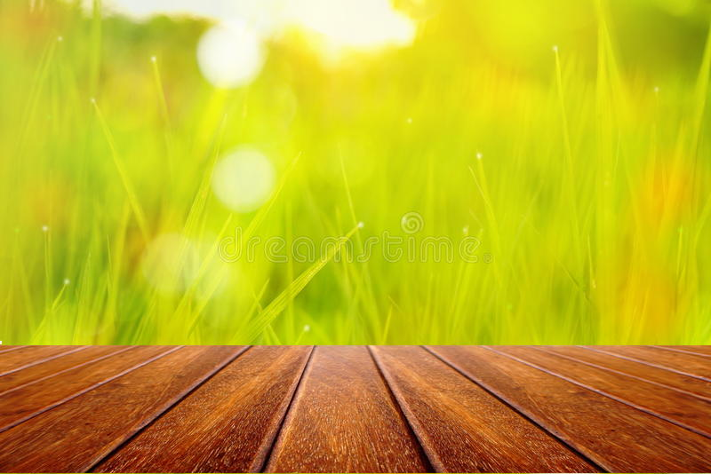 Perspective wooden table on nature field of green grass blur background stock photos