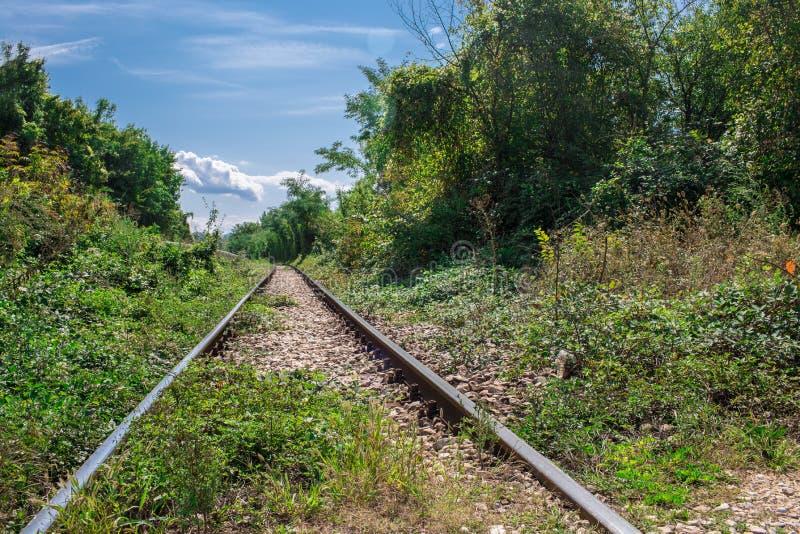 Perspektiven-Ansicht der Wege der alten Eisenbahn in den grünen Vorderteilen lizenzfreies stockbild