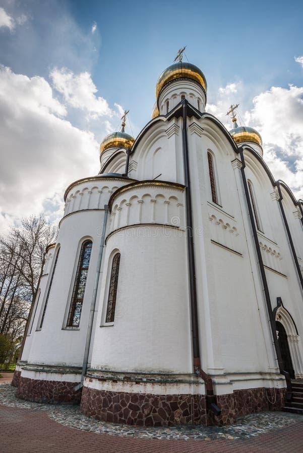 Perspektivet av den St Nicholas domkyrkan royaltyfria bilder