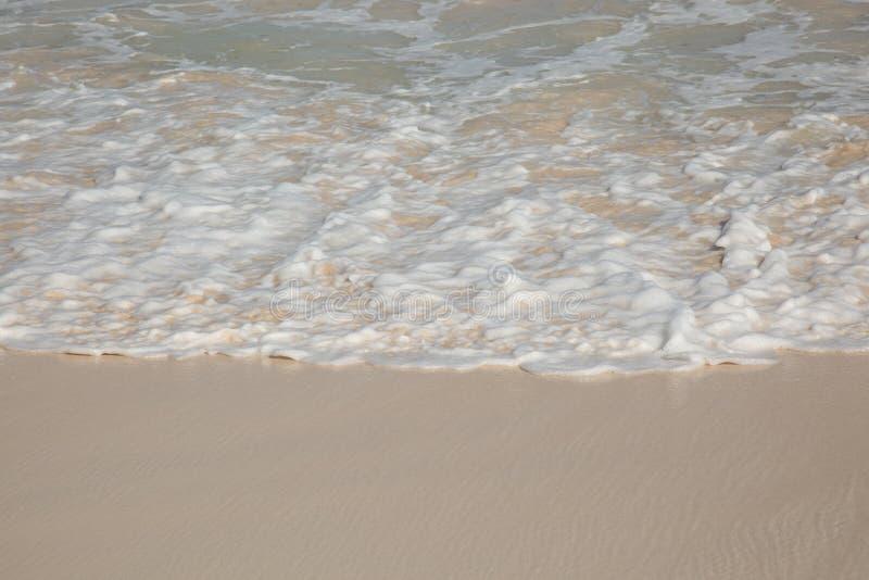 Perspektivsikt från ett havskum på en sandjordning royaltyfri foto