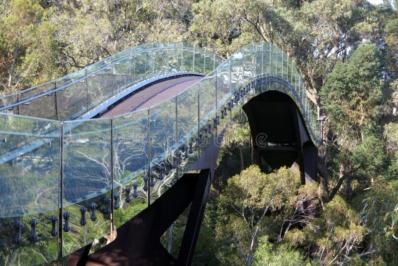 Perth Walkway Glass Arched Bridge Australia zdjęcia stock