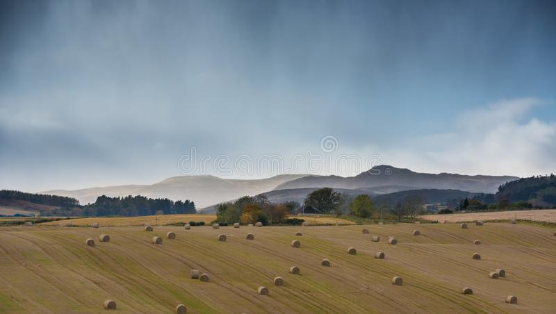 Perthshire and Kinross landscape after harvest - golden fields, straw bales, misty mountains in background stock photos