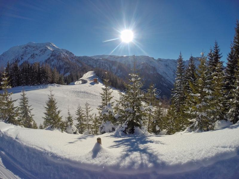 Pertisau above at the Alps in Tyrol, Austria royalty free stock image