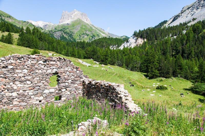 Download Cumes italianos imagem de stock. Imagem de grama, tourism - 29827913