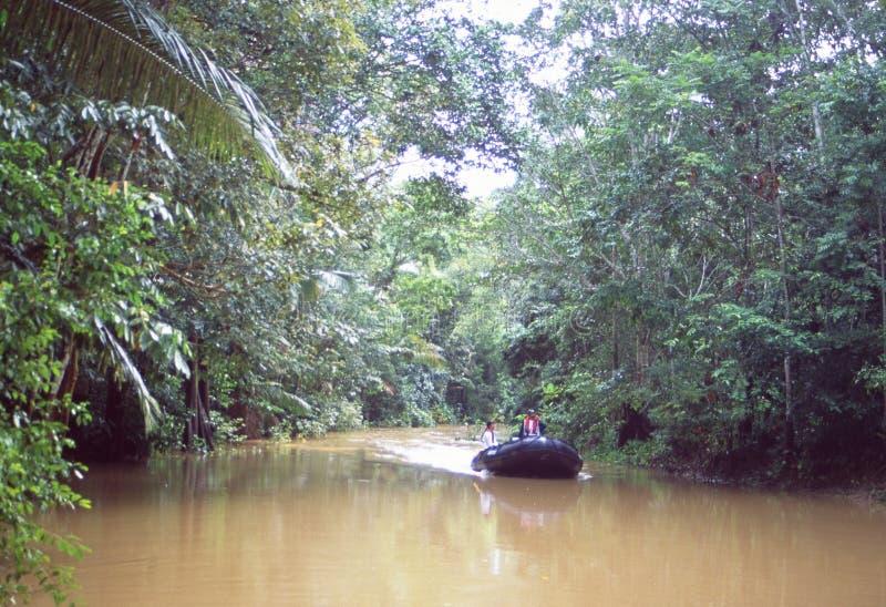 Peru: Cientistas do clima e especialistas em ambiente num cruzeiro no rio Amazonas perto da cidade de Iquitos imagem de stock
