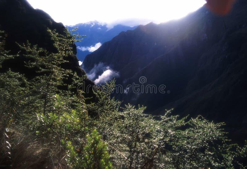 Peru da fuga do Inca foto de stock royalty free