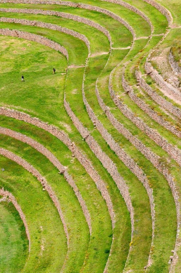 Peru, Inca Terraces do Moray fotos de stock royalty free