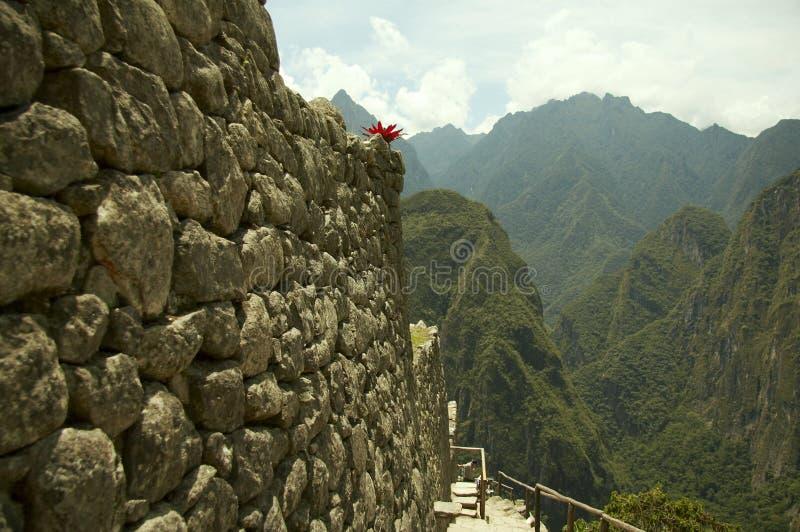 Peru inków mury miasta zdjęcie royalty free