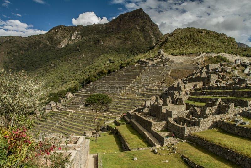 Peru machu picchu Antyczny inka miasto, lokalizować na Peru przy górą, cud świat fotografia royalty free