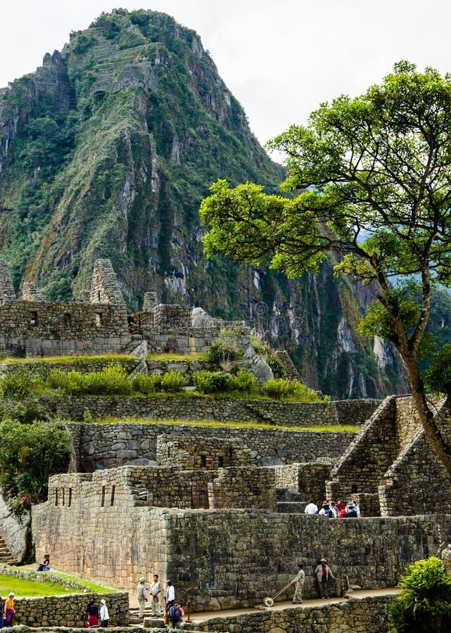 Peru, maio, Machu teares do pico de Picchu, vertical, Andes sobre ruínas antigas foto de stock