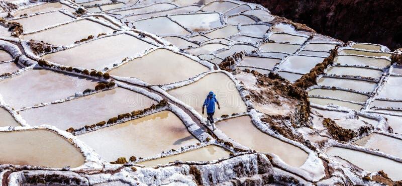Peru, Maras salinas, solankowi odparowywanie stawy obrazy royalty free