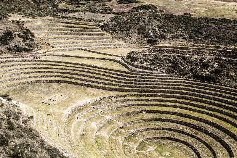 Peru, Moray, alte Inkarundschreibenterrassen. Probable dort ist das Inkalabor der Landwirtschaft lizenzfreie stockfotos