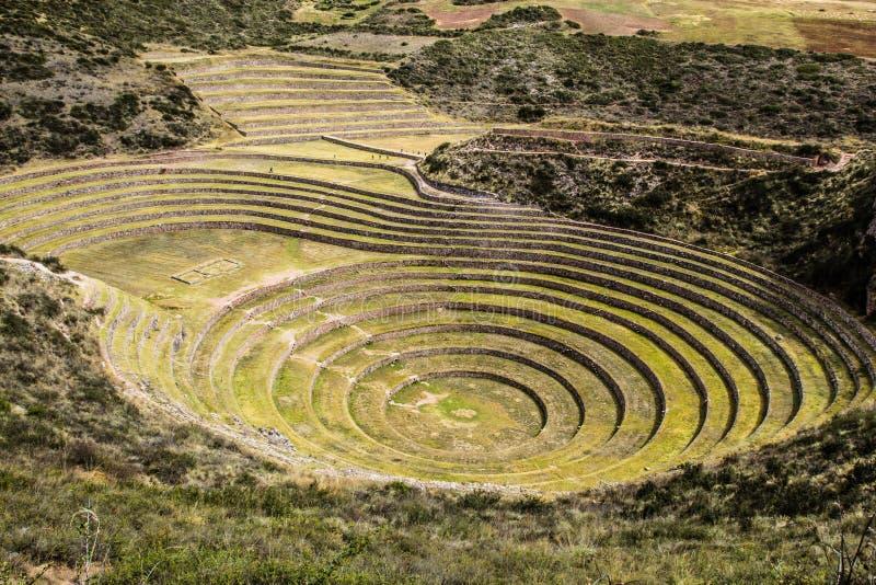 Peru, Moray, terraços antigos da circular do Inca. O Probable lá é o laboratório dos Incas da agricultura fotografia de stock
