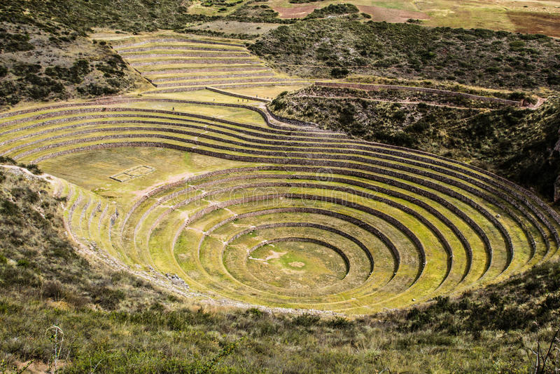 Peru, murena, antyczna inka kurenda tarasuje. Prawdopodobny kandydat tam jest Incas laboratorium rolnictwo fotografia stock