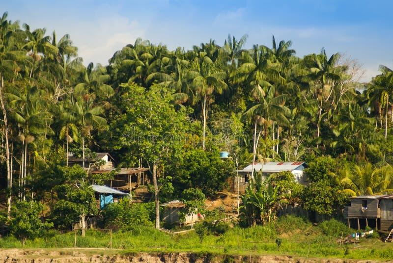 Peru, Peruwiański Amazonas krajobraz. Fotografii teraźniejszość typowy ind zdjęcie stock