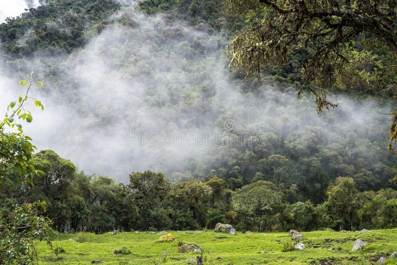 Peru Trekking de Salkantay imagens de stock royalty free