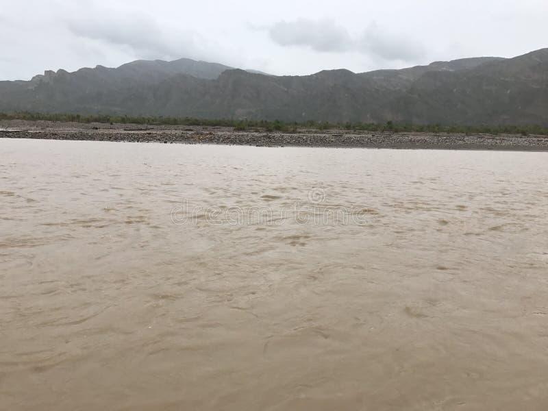 Peruan för flodbank royaltyfria bilder