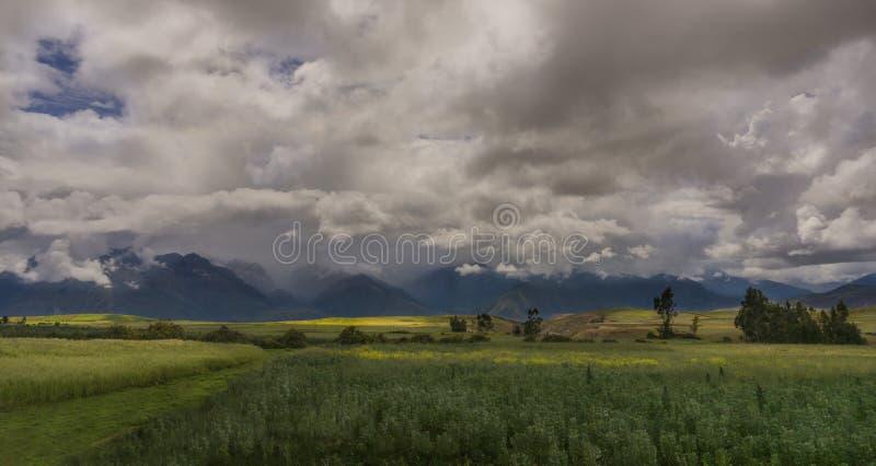 Peruanische Landschaft stockfotos