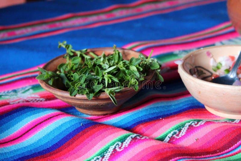 Peruanische Muna-Blätter für Tee lizenzfreie stockbilder