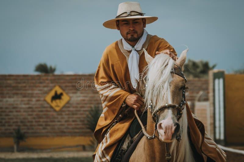 Peruanischer Cowboy, der ein Pferd reitet stockfotografie