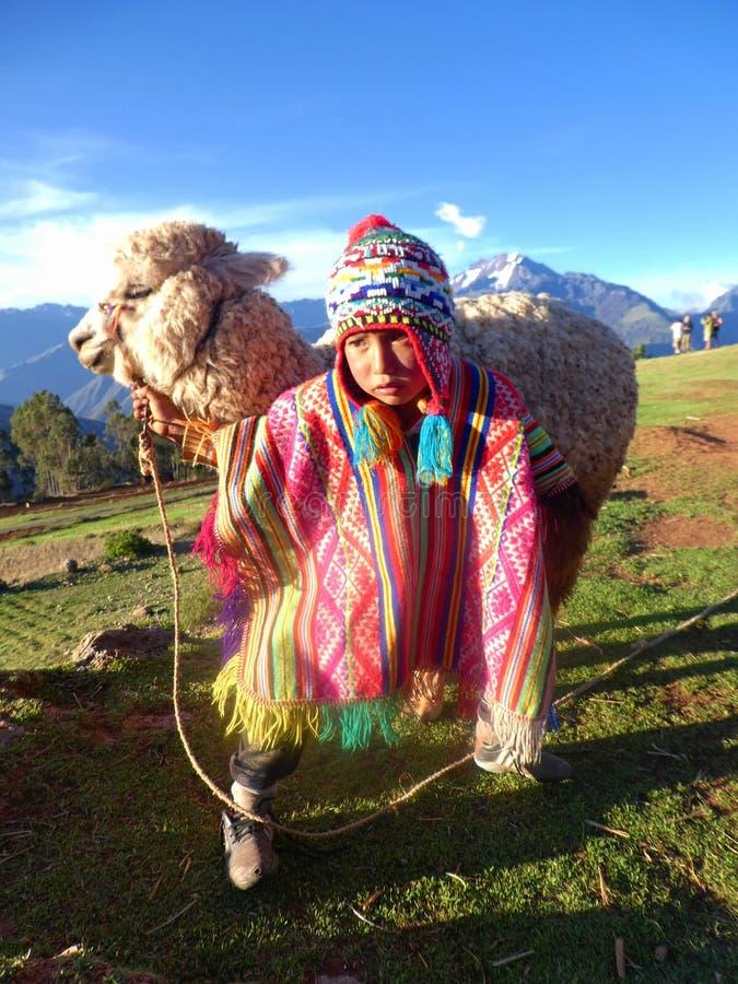 Peruanischer Junge mit Lama stockfotografie