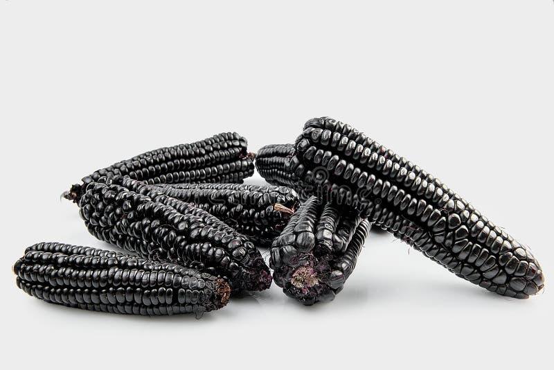 Peruanisches purpurrotes Mais maiz morado, das hauptsächlich verwendet wird, um Saft zuzubereiten, nannte chicha morada stockfoto